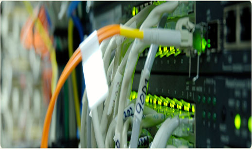 Server, Networking Support Services - Technical-Assistance